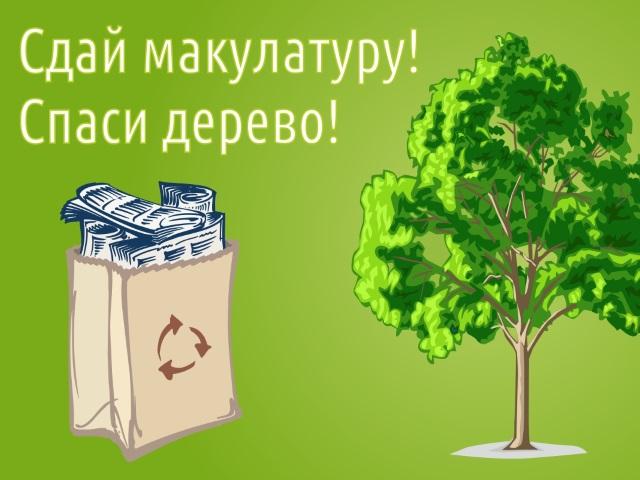 Сдай макулатуру — спаси дерево!